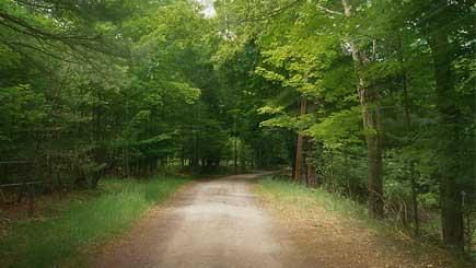 Journey With Philippians 1